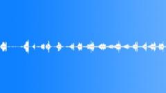 animals_garden warbler_05 - sound effect