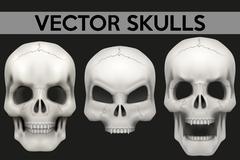 Vector set of Creative Human skulls Stock Illustration