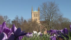 Pershore Abbey, Worcestershire, England, with Crocuses Spring - Abbey Park Stock Footage