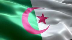 Flag Algeria - stock footage