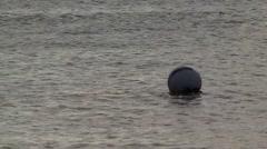 Mooring buoys Stock Footage