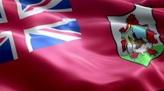 Flag Bermuda Stock Footage