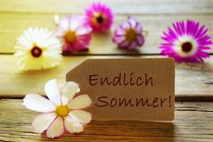 Sunny Label With German Text Endlich Sommer With Cosmea Blossoms - stock photo