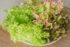 Fresh salad vegetable on wooden background Stock Photos