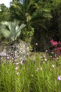 Picturesque Habitation Anse Latouche garden in Martinique Stock Photos