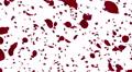 Rose petals red tornado Dw 4k Footage