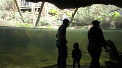 Families at Fresh Water Aquarium Stock Footage