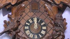 Cuckoo Clock striking Stock Footage