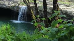 Grass and waterfall Stock Footage