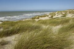 dune of  Stella Plage in Nord Pas de Calais - stock photo