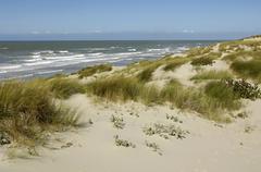 dune of  Stella Plage in Nord Pas de Calais - stock photo