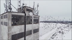Birds flying around grungy building Stock Footage