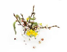 Spring bouquet isolated - stock photo