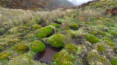 A bog in the bottom of a valley at high altitude in the Andes Stock Footage