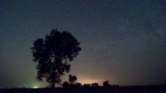 4K! Lone tree star time lapse - stock footage