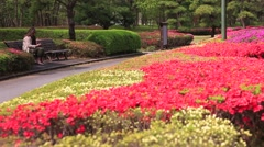 Imperial Palace park bench Stock Footage