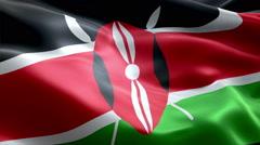 Flag Kenya Stock Footage