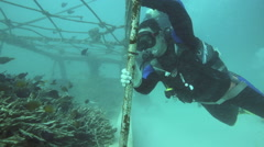 Scuba diver holding onto artificial reef to stay in position in strong current Stock Footage