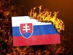Flag burning - Slovakia Stock Photos