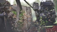 Hay chopper in the field Stock Footage