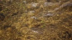 Sunshine waters - stock footage