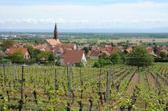 Stock Photo of Alsace, the village of Kintzheim in Bas Rhin