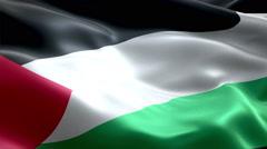 Flag Palestine - stock footage