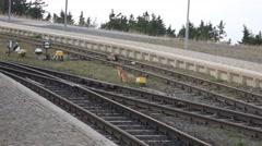4k Zoom German red fox Harz mountain Brocken peak rails Stock Footage