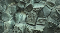 Crystallized lava with face-like surface in Asbyrgi, Iceland Stock Footage