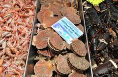 Picturesque market of La Baule in Loire Atlantique Stock Photos