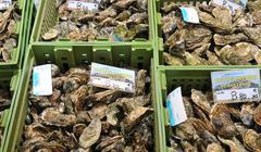 picturesque market of La Baule in Loire Atlantique - stock photo