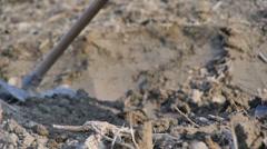 Farmer tilling the lands - stock footage