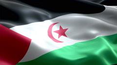 Flag Sahrawi Arab Democratic Republic Stock Footage