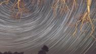 Stock Video Footage of Time lapse of startrails moving across sky in front of tree branches