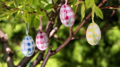 Easter eggs hanging on a tree, easter decoration Stock Footage
