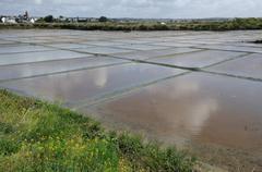 France, the salt evaporation pond in Guerande Stock Photos