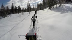 Woman cross country skiing through a forest pulling a trailer Stock Footage