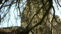 Ruins Abbey Glastonbury Spring Stock Footage