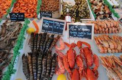 crustacean - stock photo