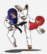 Taekwondo. Martial art Stock Illustration