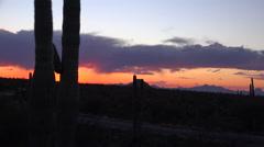 4K Traffic Time lapse Through Arizona Saguaro Cactus Landscape Stock Footage