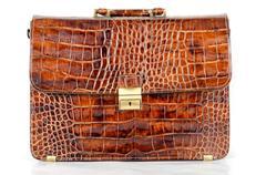 Brown expensive briefcase Stock Photos