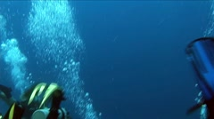 Flippers and Diver's Bubbles - stock footage