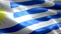 Flag Uruguay - stock footage