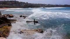 Bronte Beach, Sydney Waves Stock Footage