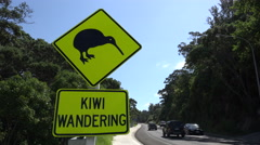 Kiwi warning road sign, Whakatane, North Island, New Zealand Stock Footage