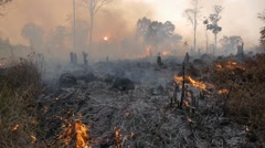 Burning forest,Tad Lo,Laos Stock Footage