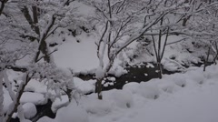 Freeze river in Japan Stock Footage