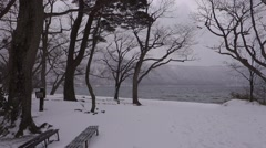 Lake Towada in cloudy day. Stock Footage