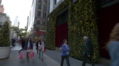 Walking on 5th Avenue in New York City Stock Footage